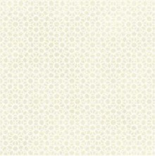 Azulej Renda Bianco 20x20